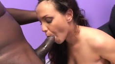Kandy Kash blows him and then gets his big black rod pumping away